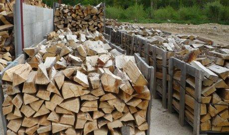 Vente de bois de chauffage à Dardilly
